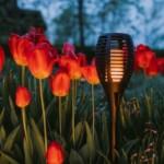 SOLAREOS® Luce ad energia solare da giardino // 2 PEZZI